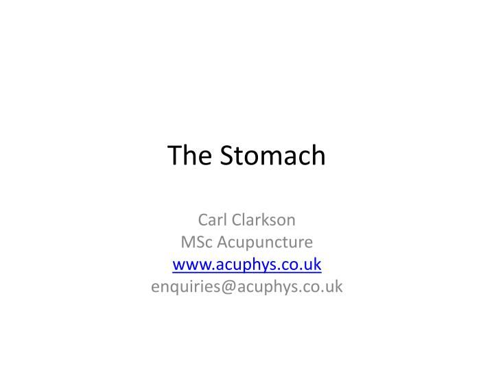 the stomach n.