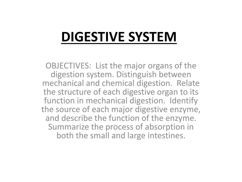 Ppt Digestive System Powerpoint Presentation Id2034249