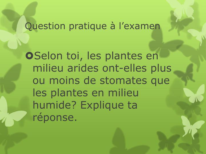 Question pratique à l'examen