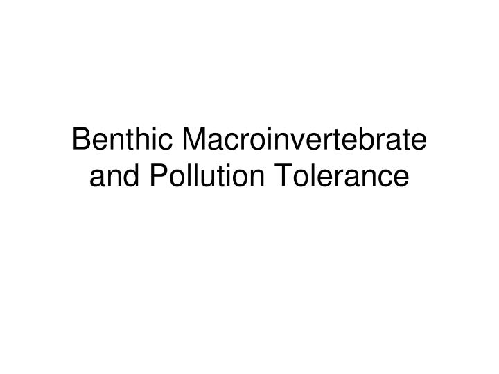 benthic macroinvertebrate and pollution tolerance n.
