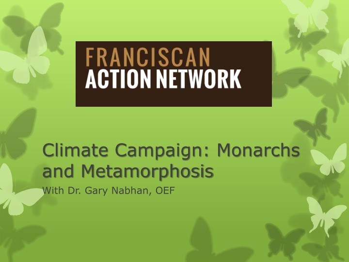 climate campaign monarchs and metamorphosis n.
