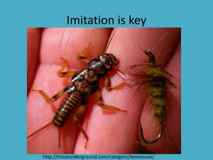 Imitation is key