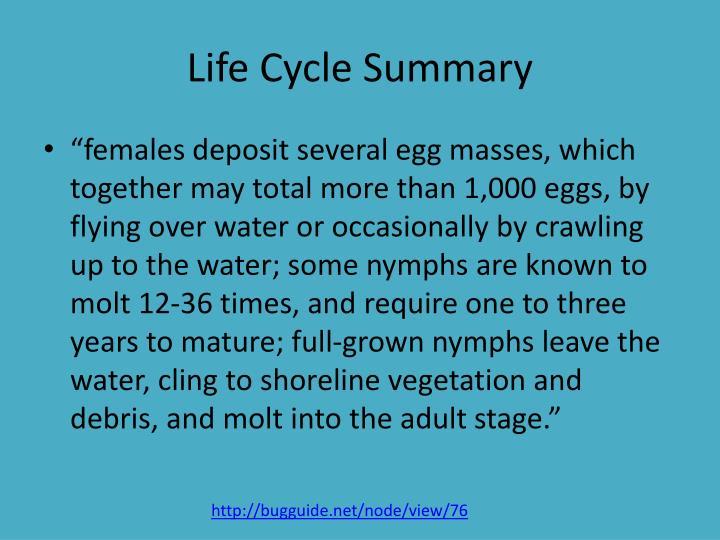 Life Cycle Summary