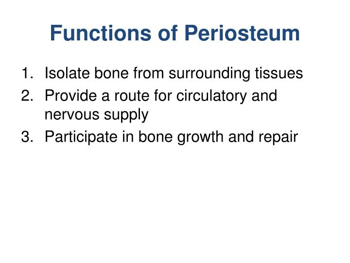 Ppt Osseous Tissue And Bone Structure Powerpoint Presentation Id