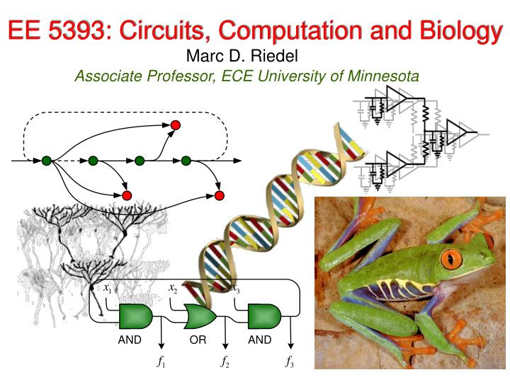 ee 5393 circuits computation and biology n.