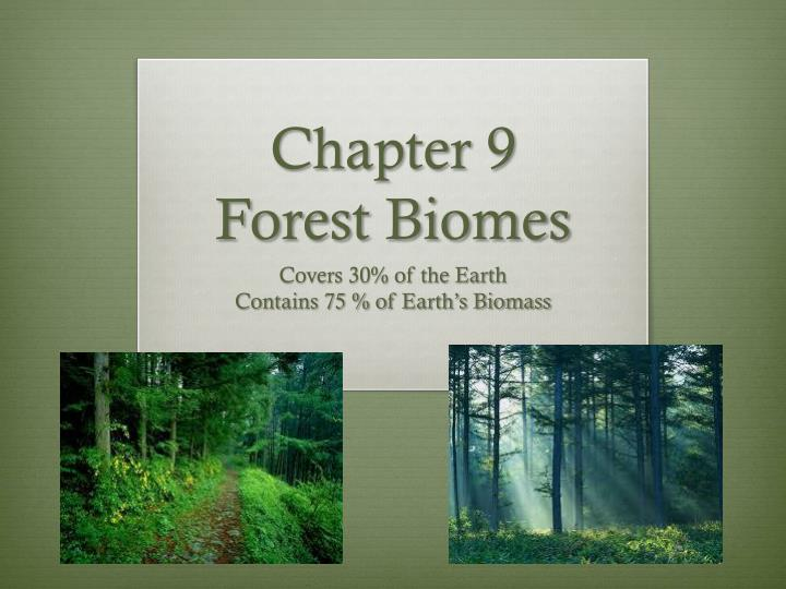 chapter 9 forest biomes n.