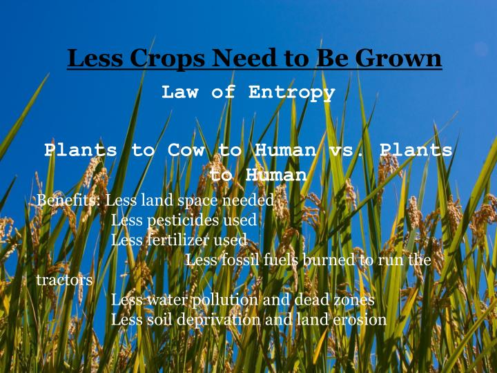 Less Crops Need to Be Grown