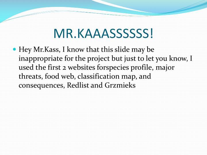 MR.KAAASSSSSS!