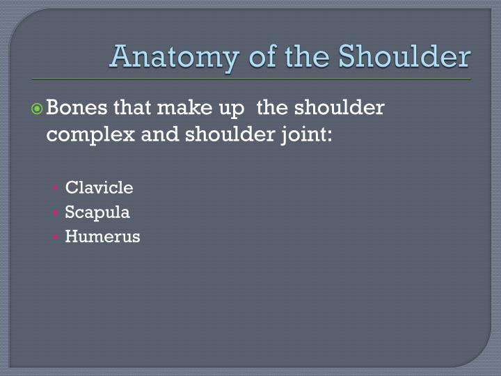 PPT - Shoulder Anatomy PowerPoint Presentation - ID:2038249