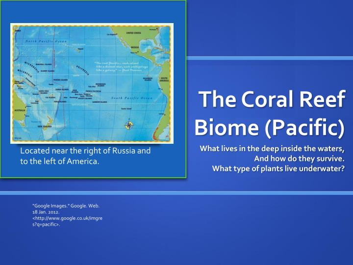 the coral reef biome pacific n.