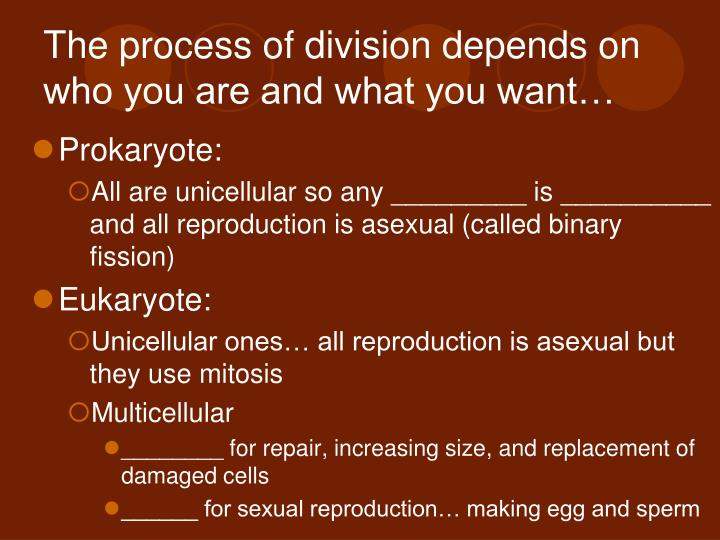 The process of division depends on who you are and what you want…