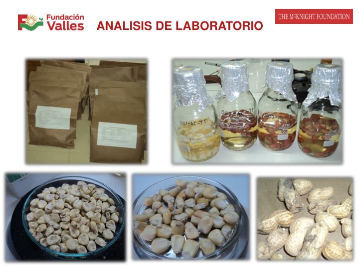 ANALISIS DE LABORATORIO