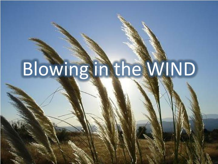 Blowing in the WIND