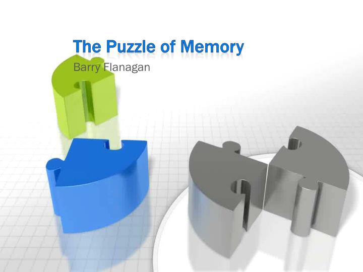 the puzzle of memory n.