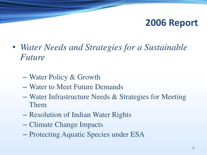 2006 Report