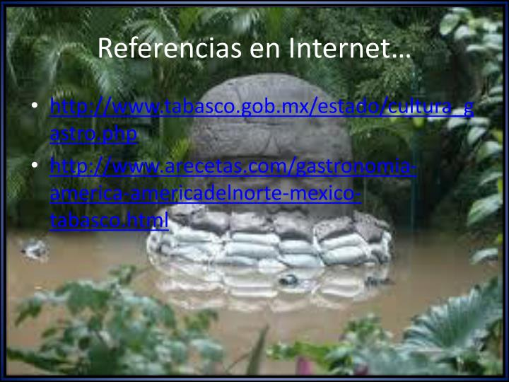 Referencias en Internet…