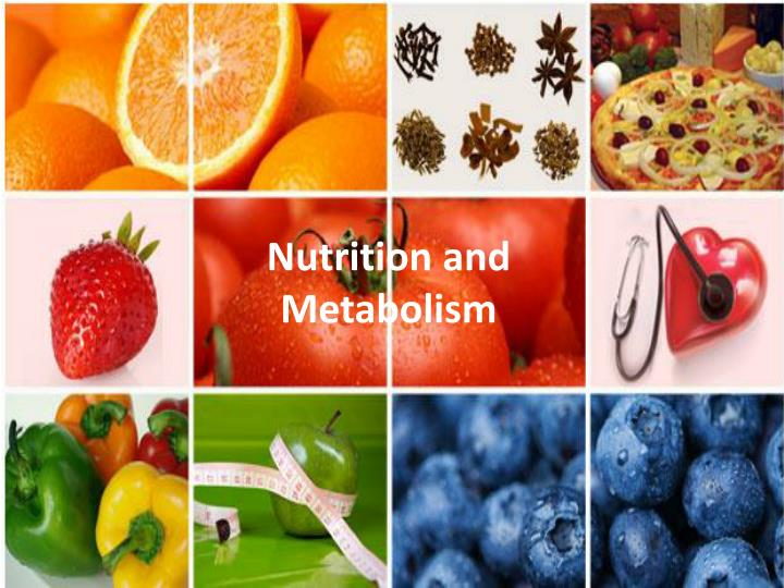 nutrition and metabolism n.