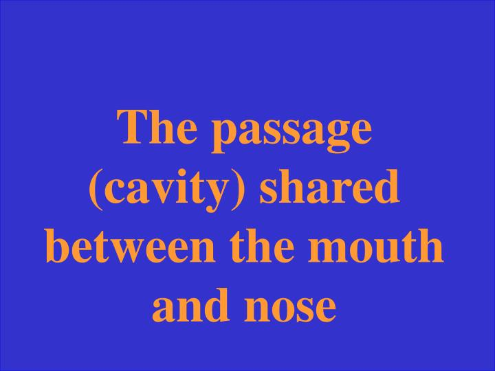 The passage (cavity) shared between the mouth and nose