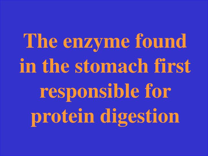The enzyme found in the stomach first responsible for protein digestion