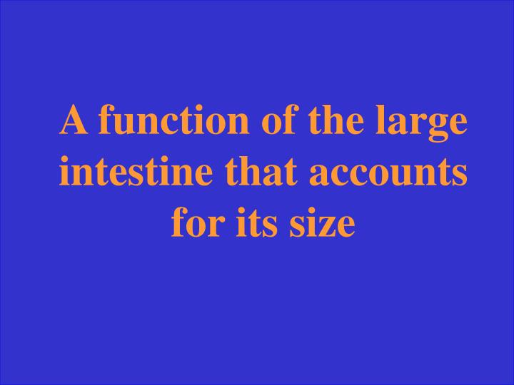 A function of the large intestine that accounts for its size
