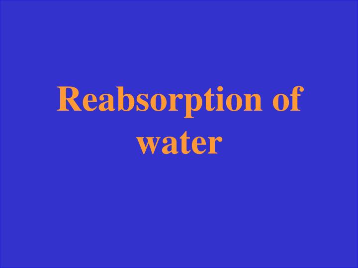Reabsorption of water