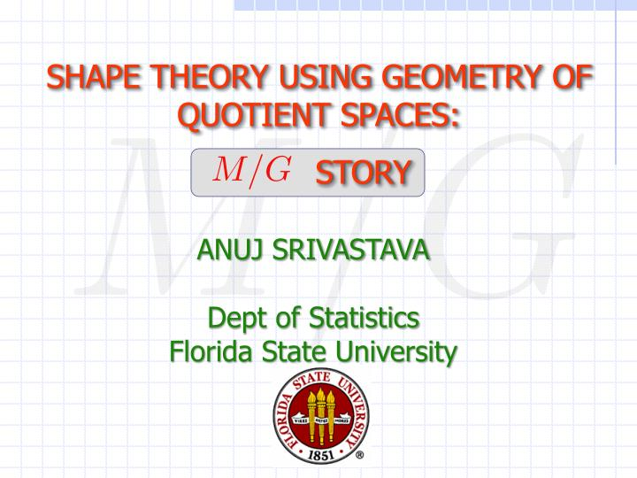 SHAPE THEORY USING GEOMETRY OF QUOTIENT SPACES: