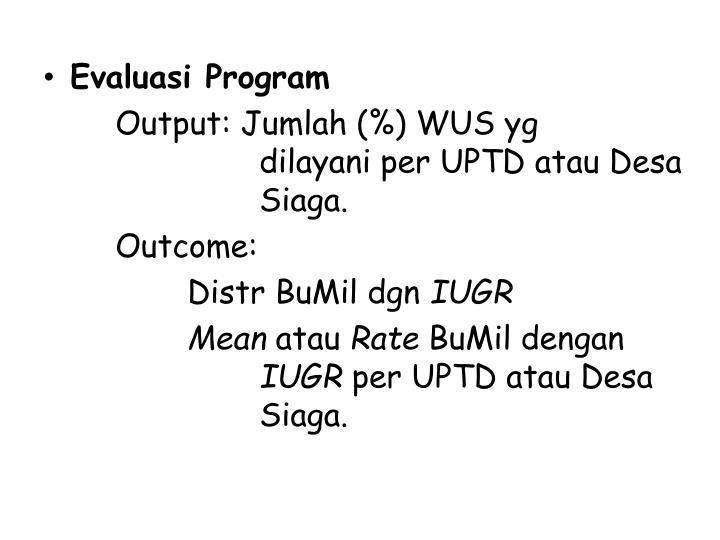 Evaluasi Program