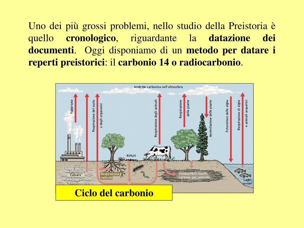 Piltdown uomo carbonio datazione