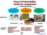 faces of vulnerability useful for comparison
