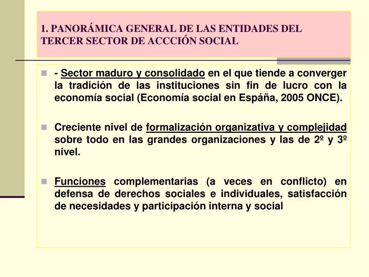 1 panor mica general de las entidades del tercer sector de accci n social