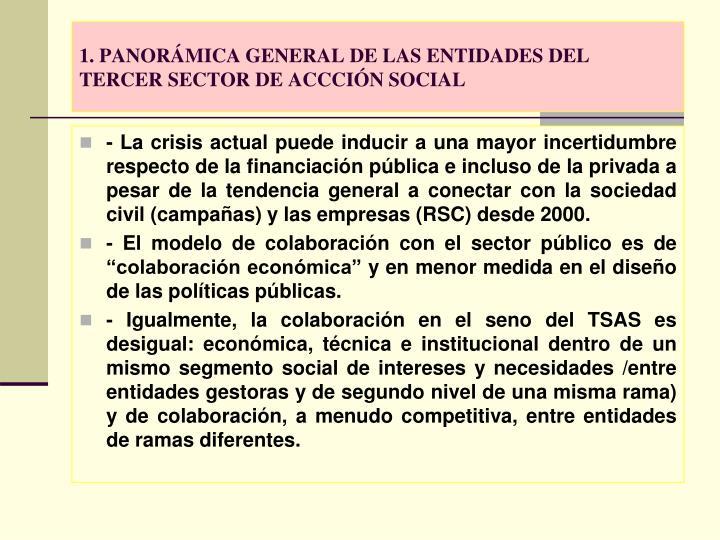 1. PANORÁMICA GENERAL DE LAS ENTIDADES DEL TERCER SECTOR DE ACCCIÓN SOCIAL