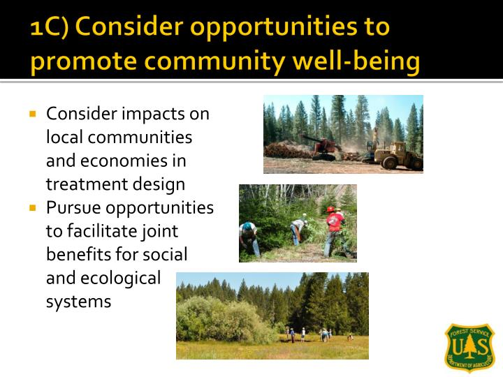 1C) Consider opportunities to promote community well-being