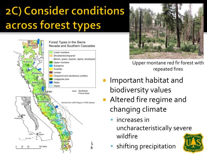 2C) Consider conditions across forest types