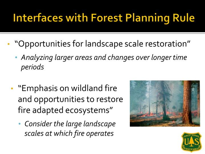 Interfaces with Forest Planning Rule