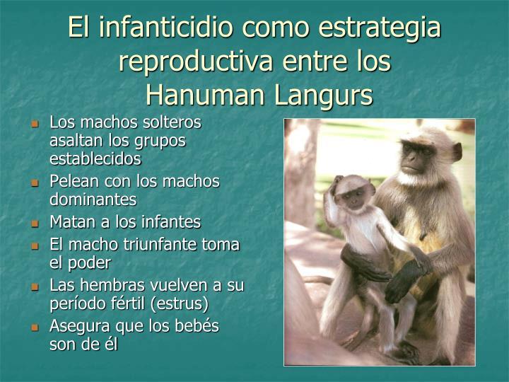 El infanticidio como estrategia reproductiva entre los