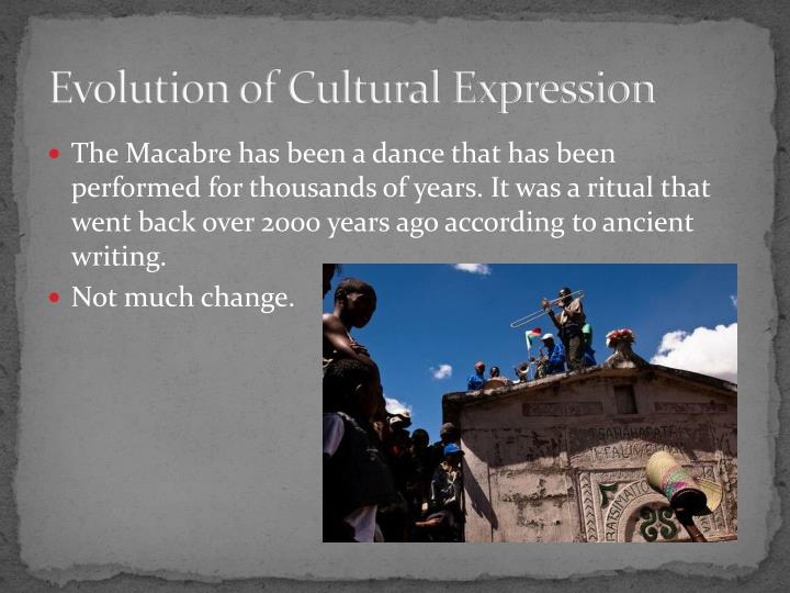 Evolution of Cultural Expression