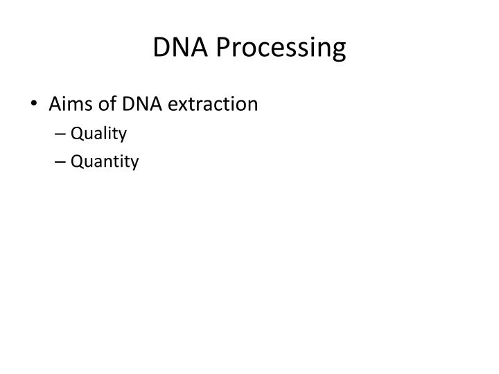 onion dna extraction essay Dna extraction extraction of dna from an onion molecular biologists and biochemists are involved with research in finding out as much as possible about the dna in plants and animals.