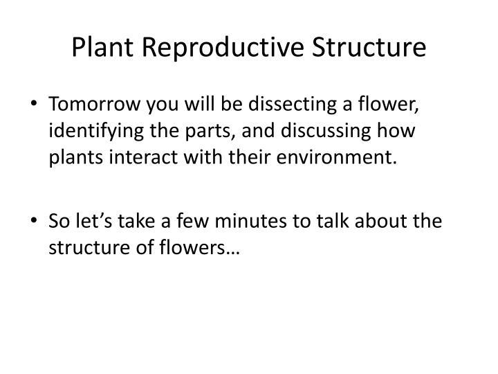 Plant Reproductive Structure