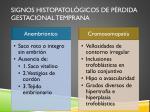 signos histopatol gicos de p rdida gestacional temprana