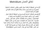 metridium