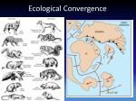 ecological convergence