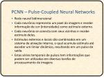 pcnn pulse coupled neural networks1