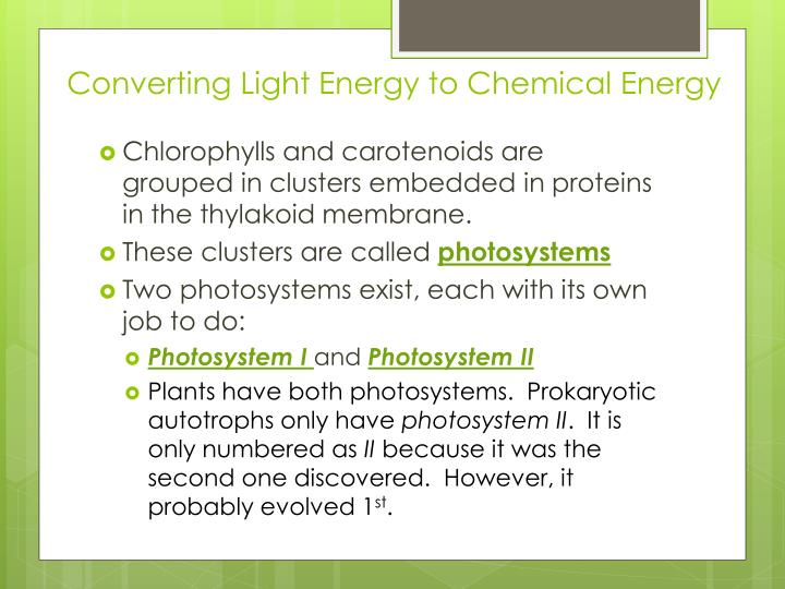Converting Light Energy to Chemical Energy