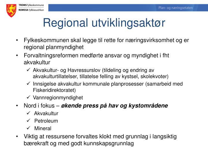 Regional utviklingsaktør