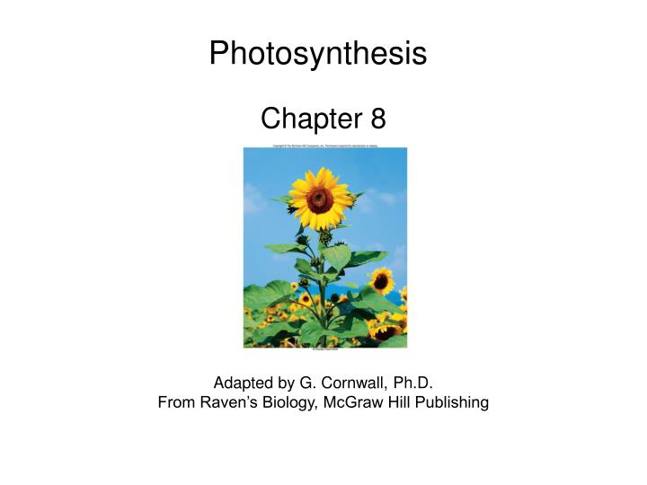 why is photosynthesis important Photosynthesis - for the existence of life on earth everyone might be aware of the term why do we need plants in our lives have you ever seen a place completely devoid of any plant life photosynthesis is thus one of the most important chemical reactions happening on the earth, which.