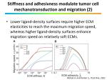 stiffness and adhesivness modulate tumor cell mechanotransduction and migration 2