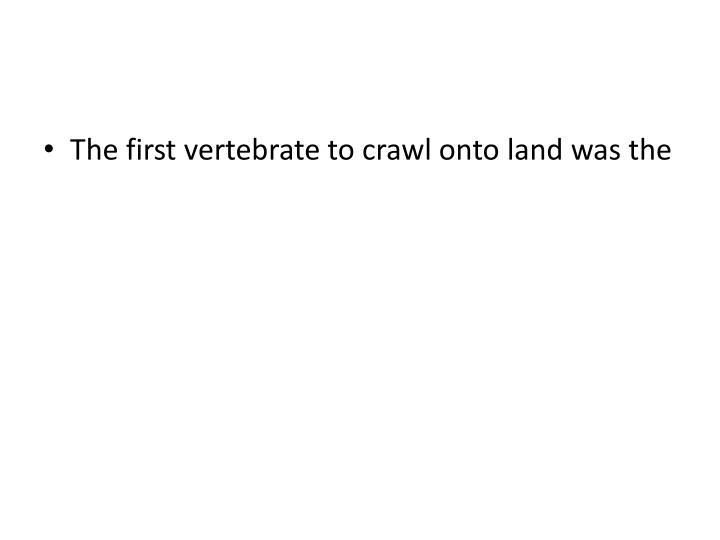 The first vertebrate to crawl onto land was the