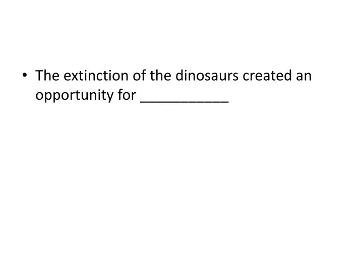 The extinction of the dinosaurs created an opportunity for ___________