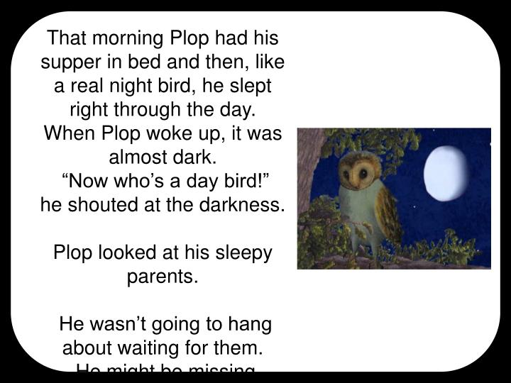 That morning Plop had his supper in bed and then, like a real night bird, he slept right through the day.