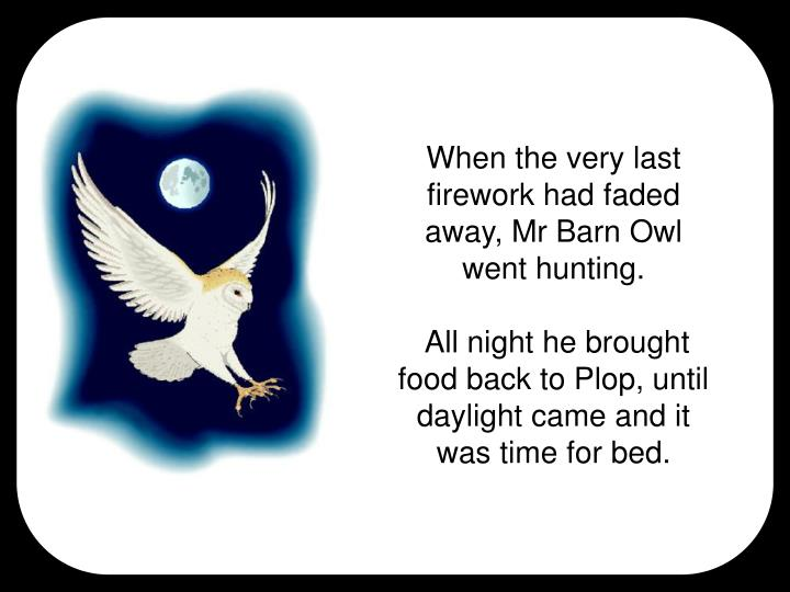 When the very last firework had faded away, Mr Barn Owl went hunting.